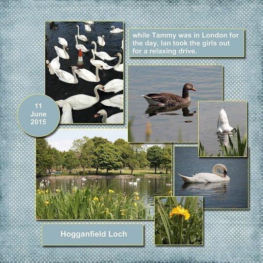 2015, Scotland, Hogganfield Loch