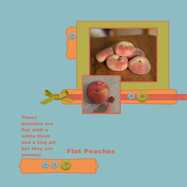 2012, Flat Peaches - Sept Monthly Sketch 13