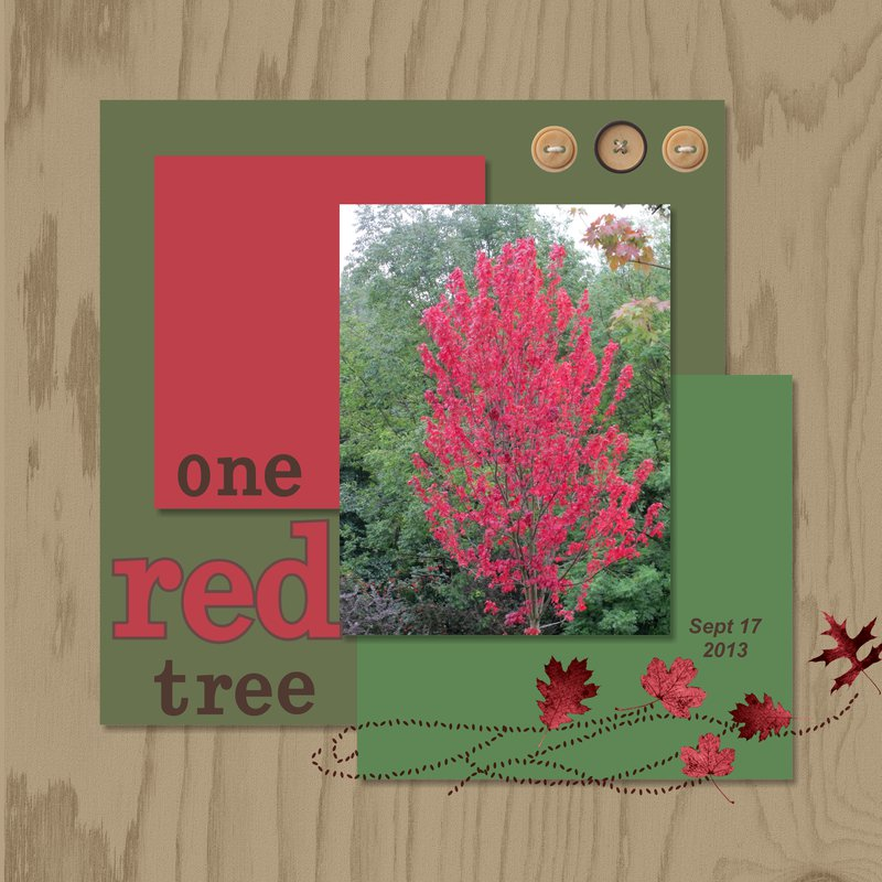 2013 - One Red Tree