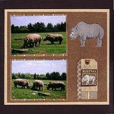 African Lion Safari - Rhino
