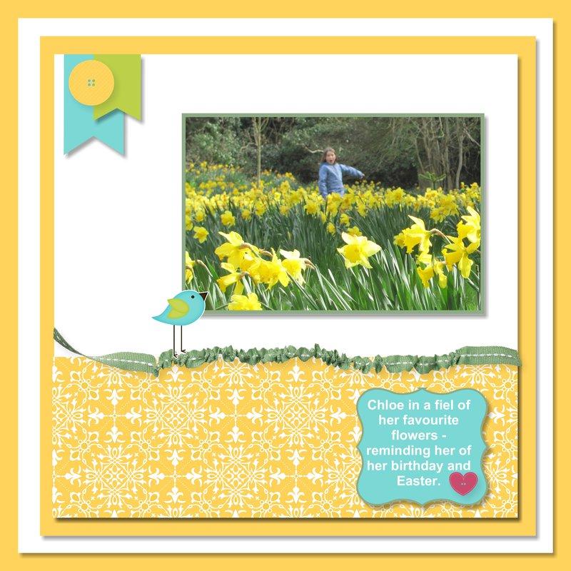 2014, Scotland, Chloe and her Daffodils