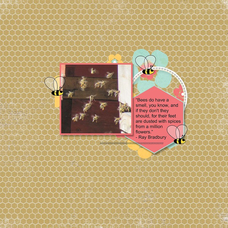 2014, Bees - May Round Robin Team 2 week 1