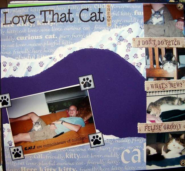 Love that Cat!
