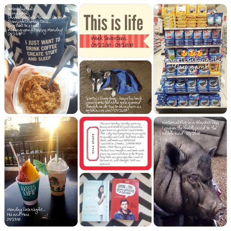 Project Life Week Seventeen/PG1