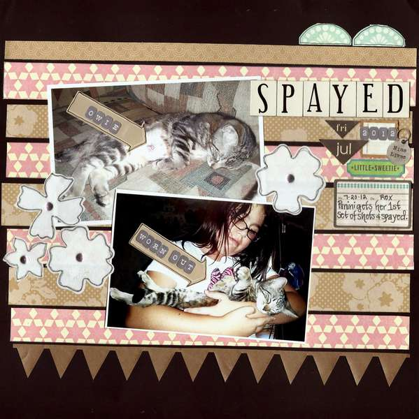 Spayed