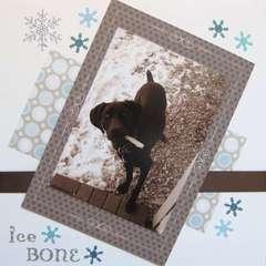 Pets Album: Page 12