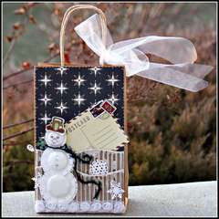 Frosty Gift Bag