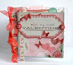 Clear Scraps acrylic Mini album by Pinky