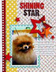 Shining Star  **American Crafts**