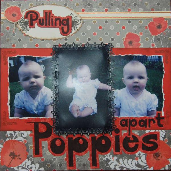 Pulling apart Poppies  pg1