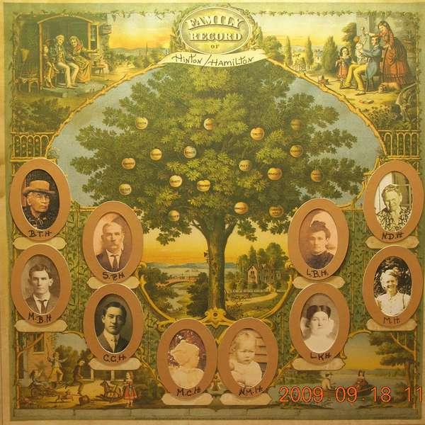 """""""My Family Tree"""""""