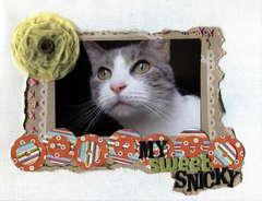 My Sweet Snicky