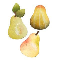 Pear, Squash or Avocado?