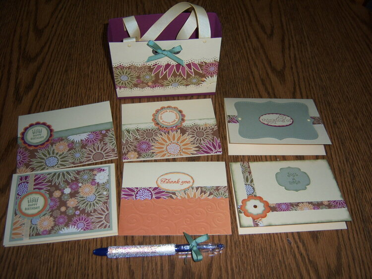 Purse with cards/pen