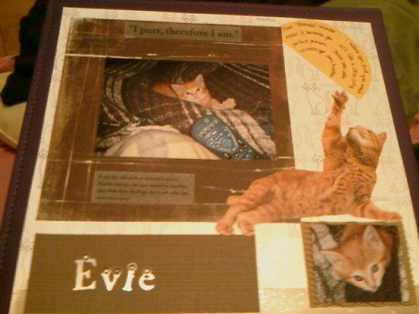 Little Evie