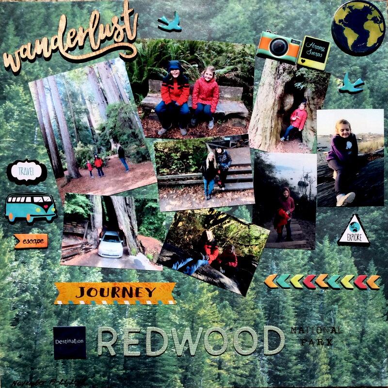 The Redwood National Park