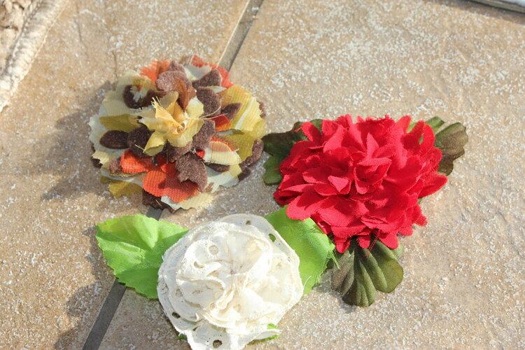 My Feburary Beach Flowers