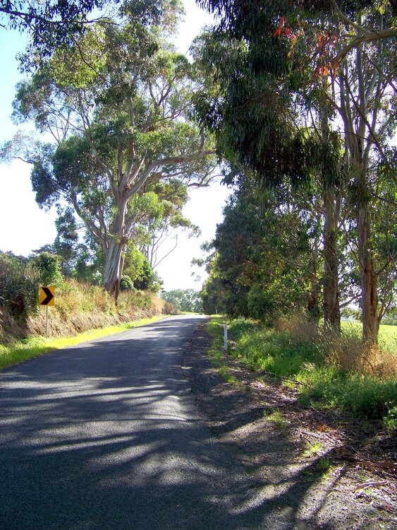 The road near home