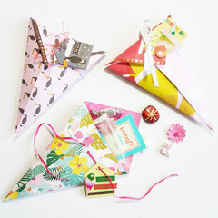 Paper Cone Treat bags