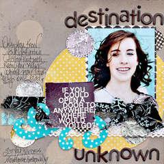 Destination Unknown  *Leslie Ashe*