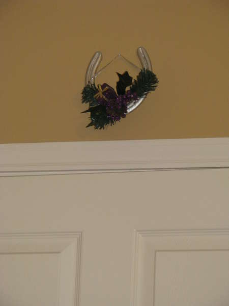 Horseshoe, friend made me, above my door for good luck!