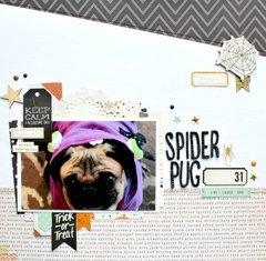 Spider Pug