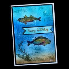 Happy Birthday Fish Card