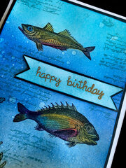 Happy Birthday Fish Card