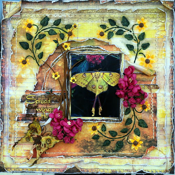 Spread your Wings And Fly****Scrap Fx****