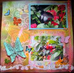 Butterfly Garden Pg4