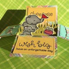 Elphie Selphie Boxed Card