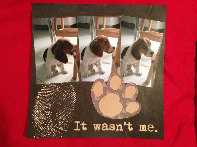 It wasn't me.