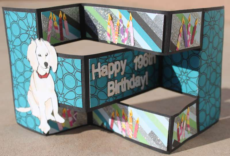 tri fold dog birthday