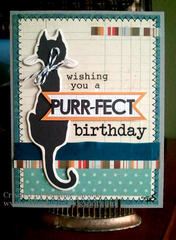 HIP KIT CLUB - October 2012 Kit - Purr-fect Card