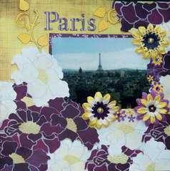 Paris TCR #28