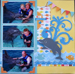 Swim with the Dolphins - Right Side
