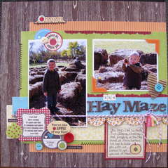 The Hay Maze