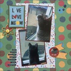 Live, Love, Meow