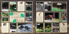 St. Louis 2013 - Zoo Intro
