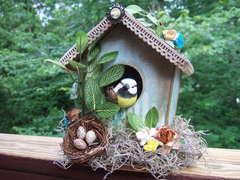 My Birdhouse