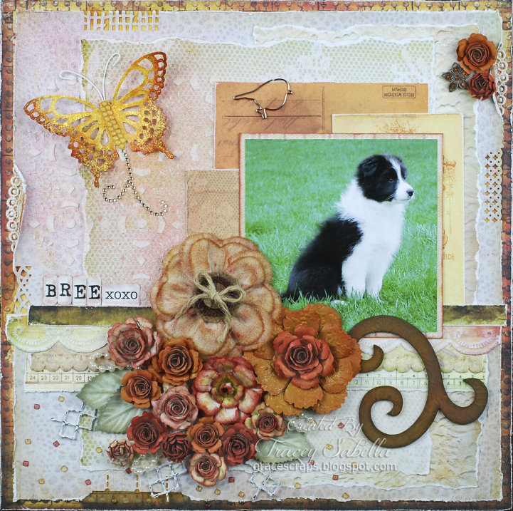 *June ScrapThat Reveal* Tracey S
