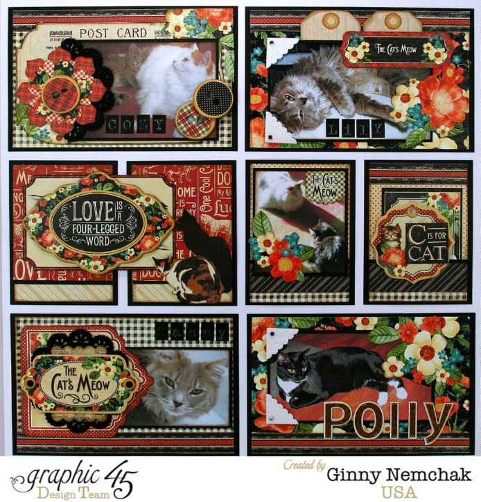 Raining Cats and Dogs Pocket Style Layout