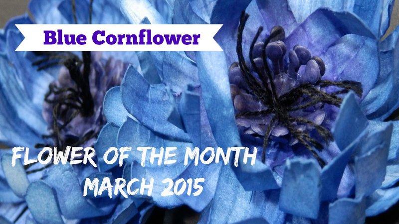 Flower of the Month - Blue Cornflower
