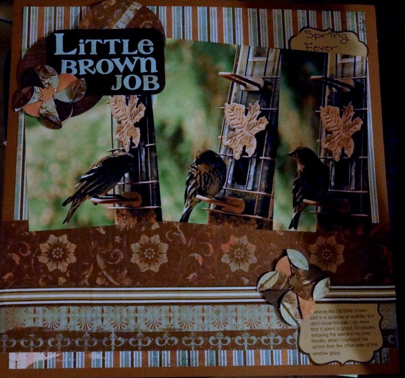 Little Brown Job