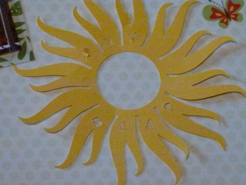 Sun Bear Detail