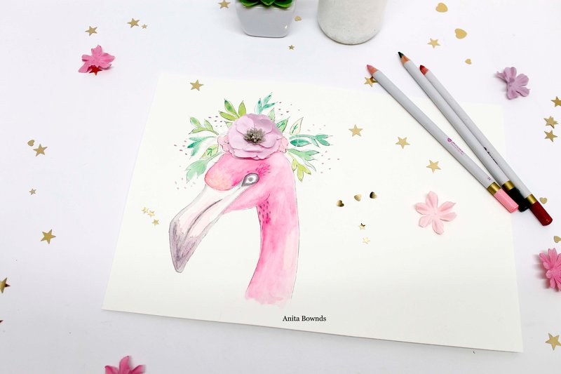 Flamingo watercolour