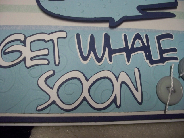 Get Whale Soon Close Up