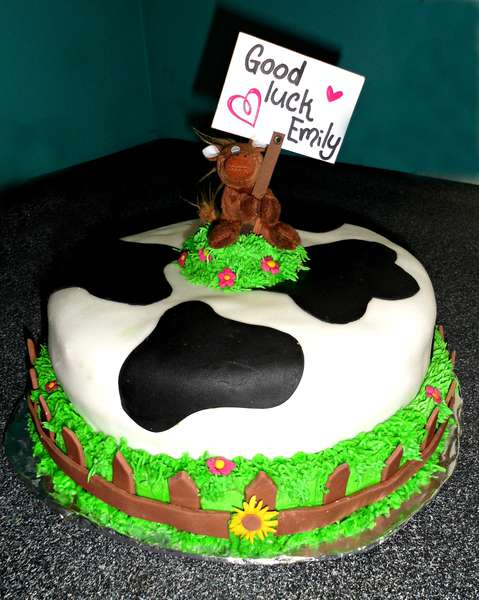 Cake for a horse-lover