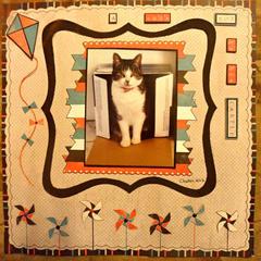 A Cat's Box is his Castle