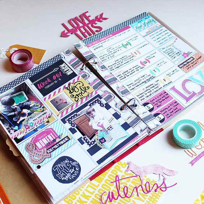 February Planner - Inserts in Simple Stories SMASH Album